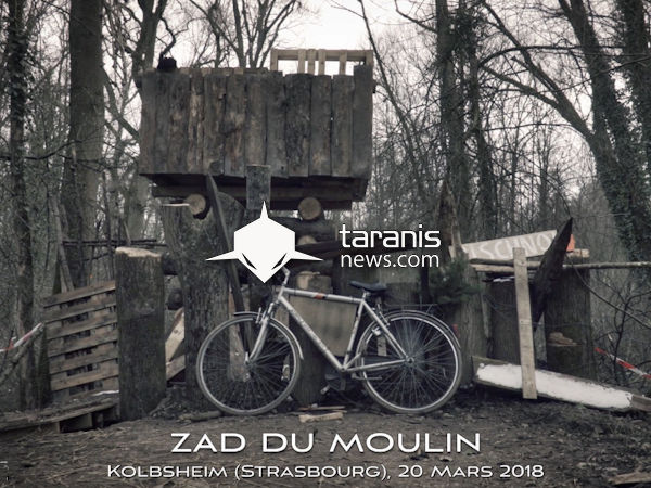 taranis news